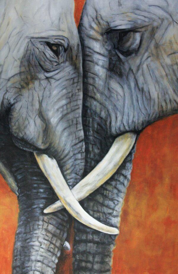 Mémentos - Mémoires D'éléphants - Couverture Livre - Collection Mémentos - Éditions Magellan & Cie