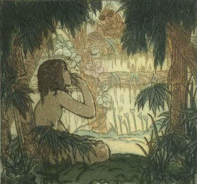 le livre de la jungle editions magellan et cie 1