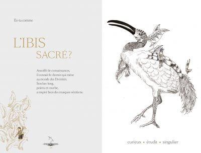 mon animal totem editions magellan et cie 1