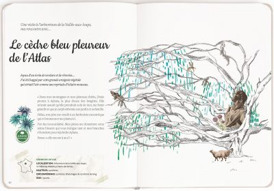 mon arboretum editions magellan et cie 1
