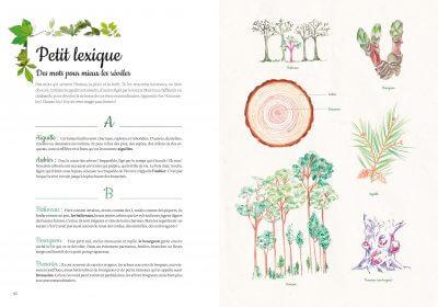 mon arboretum editions magellan et cie 7