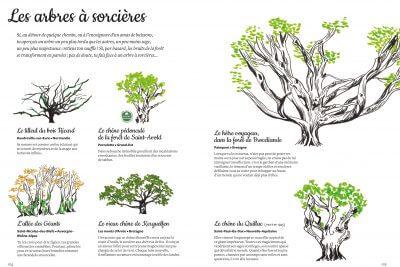 mon arboretum editions magellan et cie 8